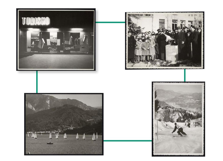 Quando i cigni arrivarono a Trento. Fotografie e racconti dall ...