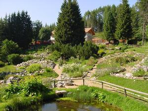 Giardino botanico alpino viote del monte bondone - Oltre il giardino torrent ita ...