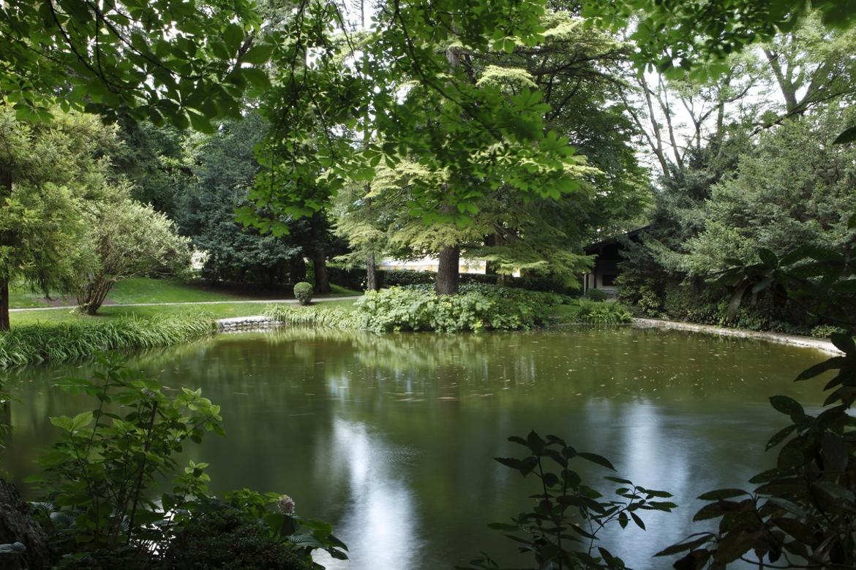 Laghetto ruscello e cascatella trentino cultura for Laghetto i giardini