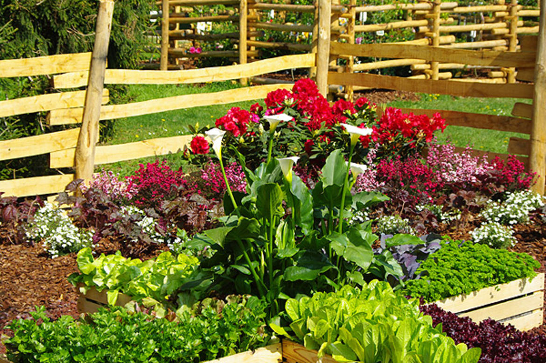 Visita guidata al parco delle terme di levico trentino for Vendita piante orto