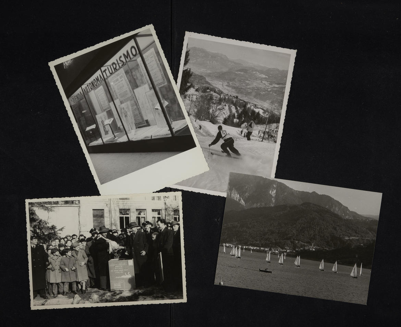 Quando i cigni arrivarono a Trento. - Trentino Cultura